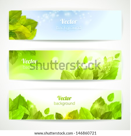 Set of vector banners with beautiful leaves. - stock vector