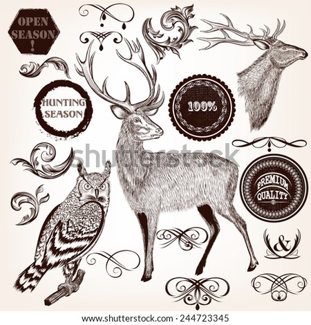 Set of vector detailed animals for design - stock vector