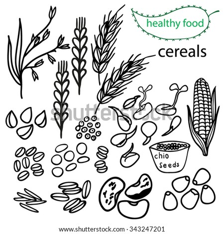 Set of vector elements for healthy food, raw food, vegetarian.Cereals.   Hand drawn. Black and white. - stock vector