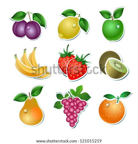 Set of vector fruit on the white background - stock vector