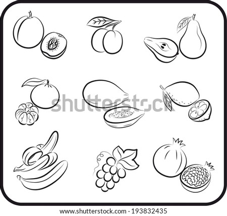 set of vector icons on the theme of fruit