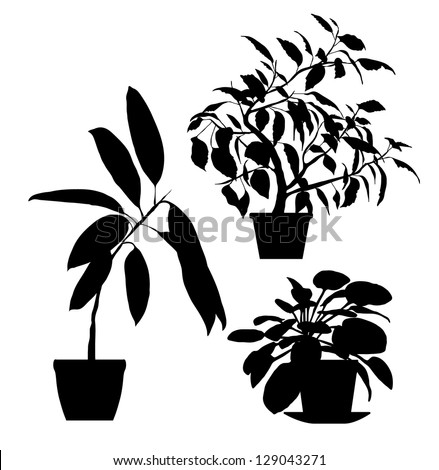 Set of Vector Indoor Potted Plants - Black Silhouettes - stock vector