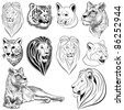 Set of vector lions, tigers, pumas, cheetahs - stock photo