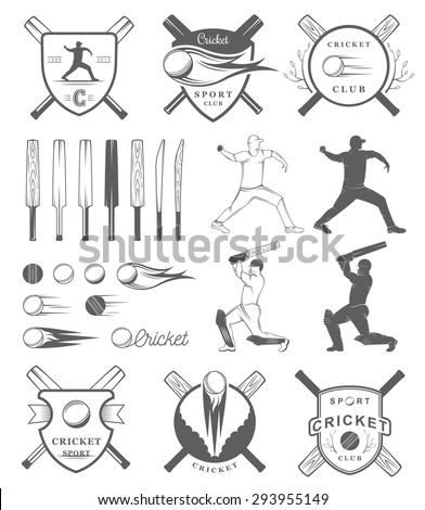 Set of vector logos and badges cricket. Collection of vintage signs, symbols and emblems sports game of cricket on a white isolated background. Set of cricket team emblem design elements - stock vector