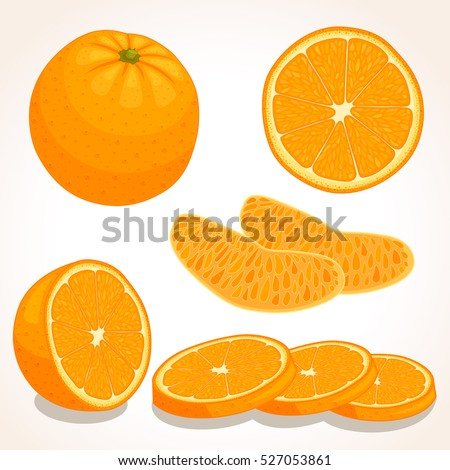Orange Fruit Vector Orange Stock Images, R...