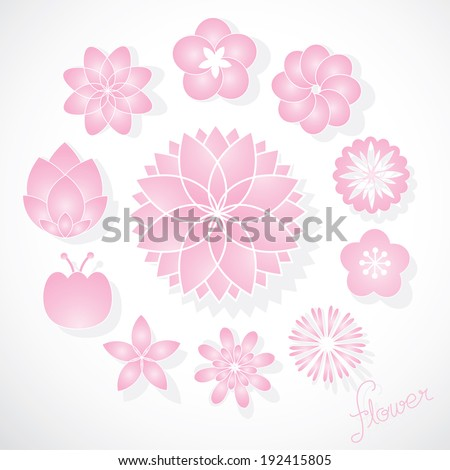 Set of Vector Pink Flowers