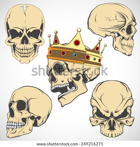 Set of vector skulls. - stock vector