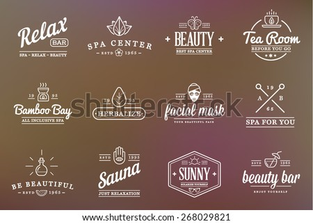 Set of Vector Spa Beauty Yoga Sport Elements Illustration  can be used as Logo or Icon in premium quality  - stock vector