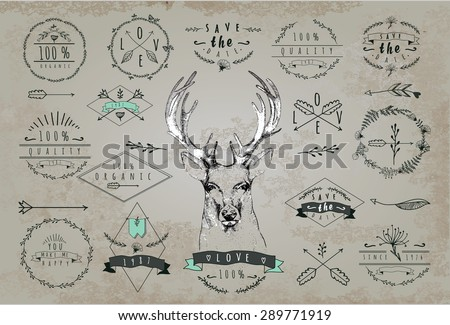 Set of vintage frames and labels with deer. Font design elements and page decoration Label collection with vintage engraving flowers. Hipster design of diffrent phrases like save date, 100% organic - stock vector