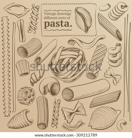 Set of Vintage Illustrations Kinds of Pasta: Freehand Drawing Contours - stock vector