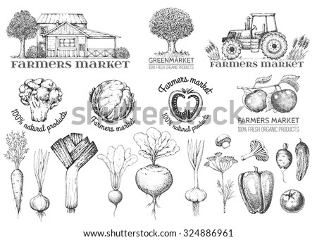 Set of vintage retro farm logo. Labels and design elements. Tree, tractor, apple, house, vegetables. Logotype. Black and white. Hand drawn illustration. Farmers market.