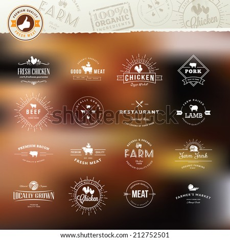 Set of vintage style elements for labels and badges for meat, fresh organic products, on the stylized background    - stock vector