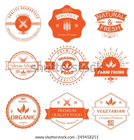 Set of vintage style elements for labels and badges for organic food and drink - stock vector