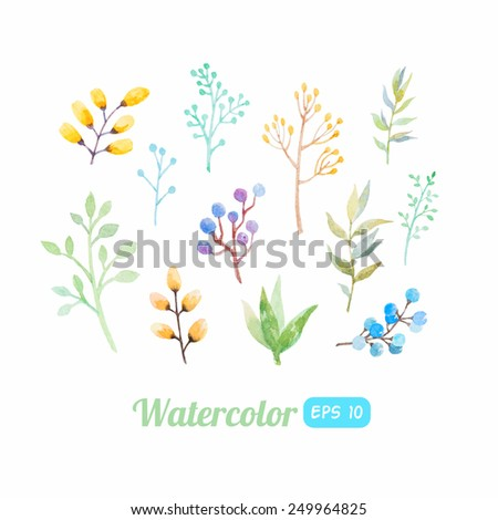 set of watercolor floral elements - stock vector