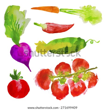 Set of watercolor vector objects. Organic food illustration. - stock vector