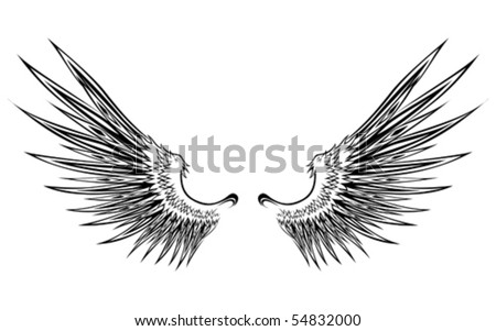 set of wing illustration - stock vector