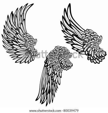 Set of wings - stock vector