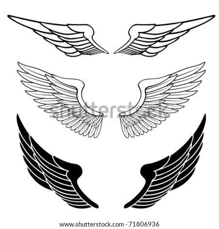 set of wings isolated on white - stock vector