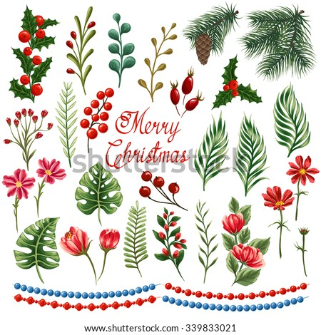 Set of winter plants, flowers and berries. Could be used for Christmas design. Stylized like watercolor.