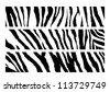 set of Zebra pattern vector - stock vector