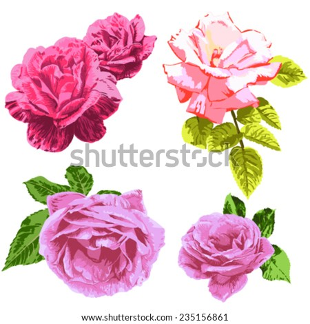 Set roses . Freehand line drawing flowers - stock vector