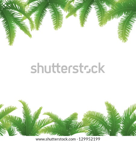 Set seamless patterns, green branches with leaves of palm trees. Vector - stock vector