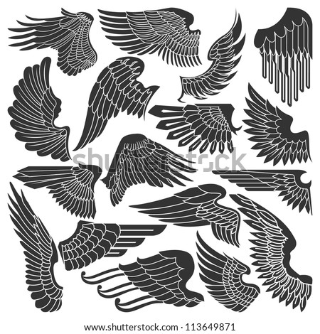 Set sketches of wings - stock vector