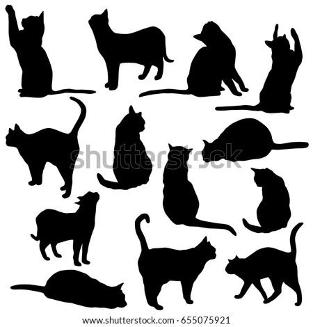 feline jumping stock images royaltyfree images  vectors