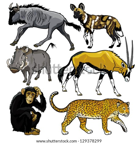 set with animals of africa,pictures isolated on white background - stock vector