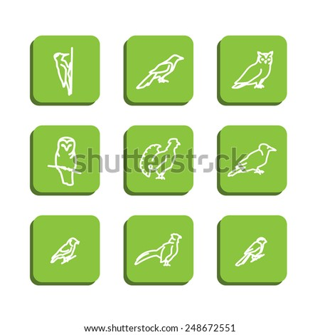 Set with icons - forest birds. A vector. - stock vector