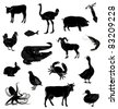 Set with silhouettes of various animals - stock