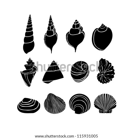 Set with silhouettes seashells - stock vector