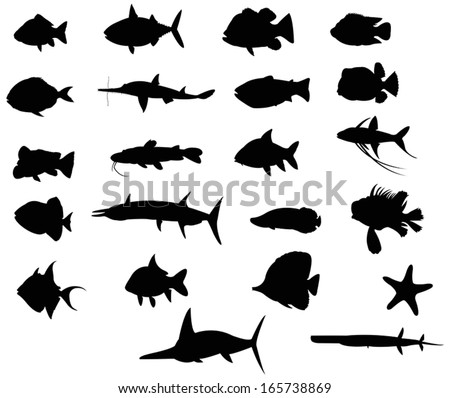 Sets of silhouette Fishes 4 with both freah water and sea, create by vector
