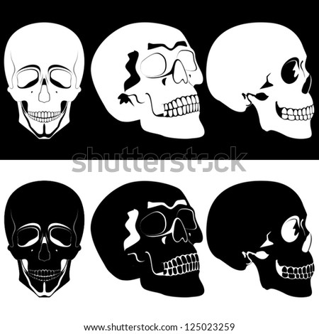 Several black and white human skulls. Illustration on black and white background.
