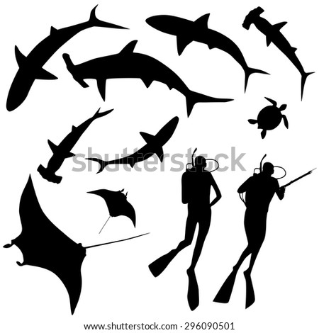 Shark and diver, swimming with sharks - set of design elements - stock vector