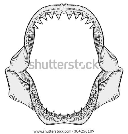 Shark Jaws Silhouette