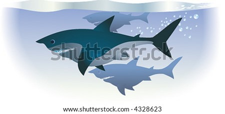 Sharks are swimming in deep water.