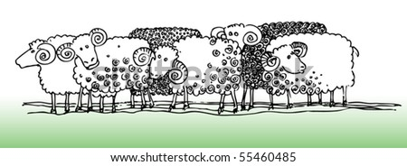 Sheep, hand-drawn illustration, vector - stock vector
