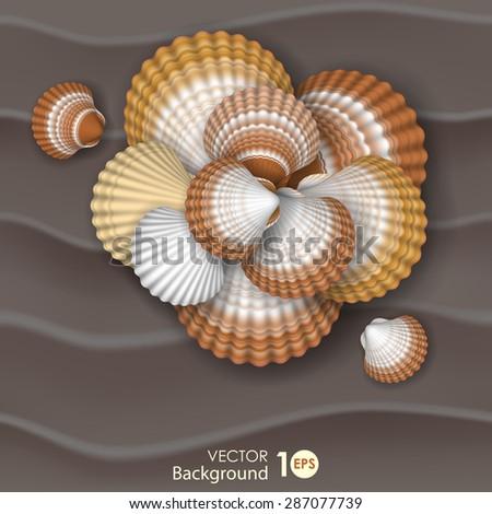 Shells on the sand. Vector eps 10. - stock vector