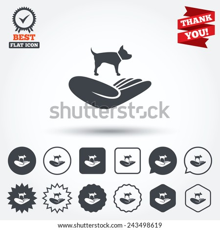 Shelter pets sign icon. Hand holds dog symbol. Animal protection. Circle, star, speech bubble and square buttons. Award medal with check mark. Thank you ribbon. Vector - stock vector
