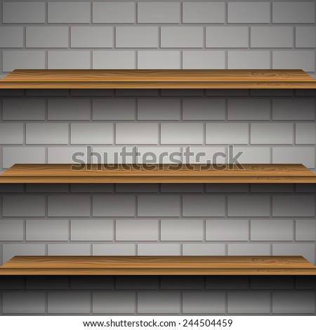 Shelves of a brick wall vector