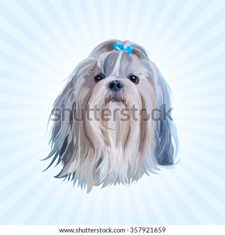Shih tzu dog portrait in blue colors - stock vector