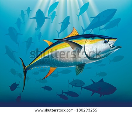 Shoal of yellowfin tuna in deep water. Realistic vector illustration. - stock vector