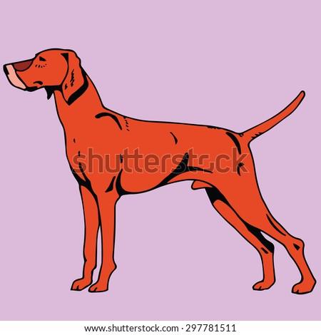 Shorthaired Dog - stock vector