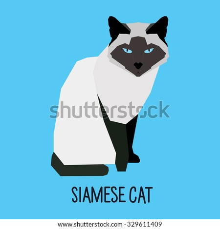 Siamese cat. Abstract Cat. Cartoon cat. Cat isolated on blue. Nature and wild theme. Graphic cat. Cat gaze. Cat close up. Cat portrait for card, book, sketch book, invitation, note book, album. Cat - stock vector