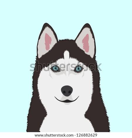 Siberian husky, The buddy dog - stock vector