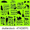 Silhouette ALL - stock vector
