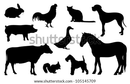 Silhouette animal - stock vector