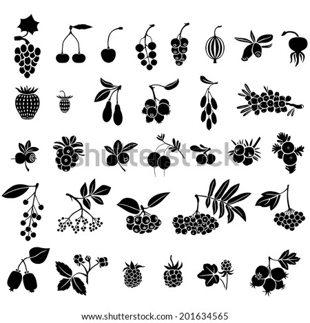 Silhouette black-and-white image of berries set  - stock vector