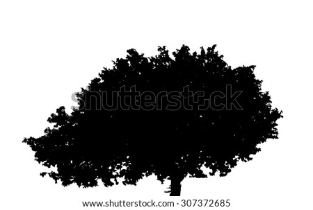Silhouette Isolated on White Background. Vector Illustration. EPS10